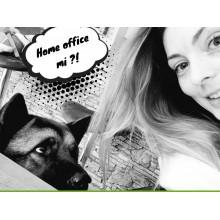 Így ne őszülj bele a home officeba!