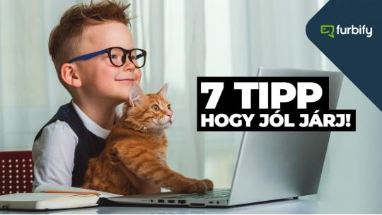 Laptop az iskolakezdéshez: 7 tipp, hogy jól járj!