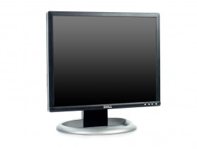 Dell 1901FP Monitor - 1441205