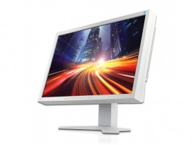 EIZO FlexScan S2202W Monitor - 1441355